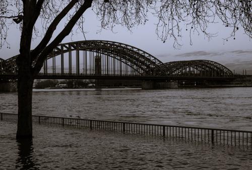 Rhein-6